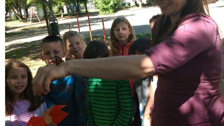 Raupenprojekt-Schmetterling-auf-dem-Arm.png